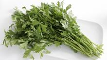 parsley_16x9